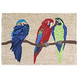 Trans-Ocean Parrots Bright Accent Rug