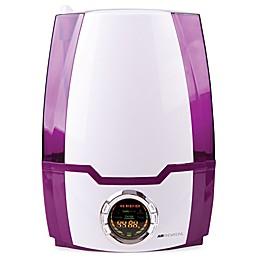 Air Innovations 1.37 Gallon Ultrasonic Digital Humidifier