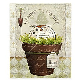 Courtside Market Herbpot Thyme Gallery Canvas Wall Art