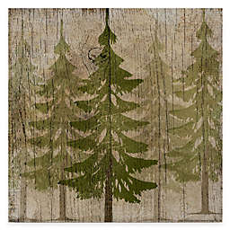 Courtside Market Pine Tree Forest 16-Inch x 16-Inch Gallery Canvas Wall Art