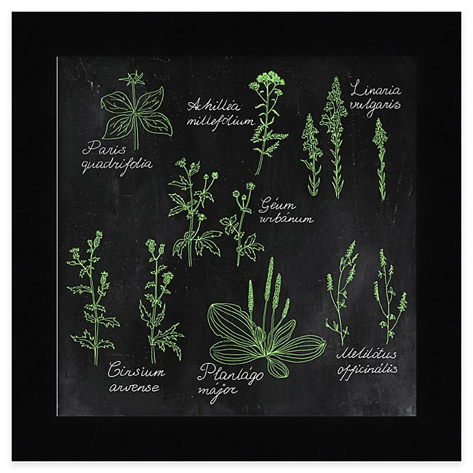 Kitchen Wall Decor Bed Bath And Beyond: Buy Chalkboard Herbs 3 Framed Wall Art From Bed Bath & Beyond