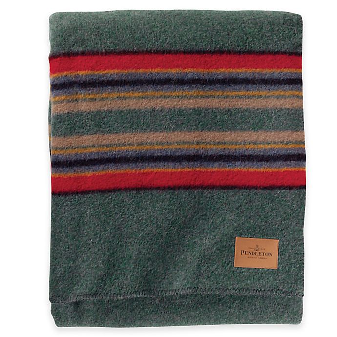 Alternate image 1 for Pendleton® Hemrich Stripe Camp Twin Blanket in Green