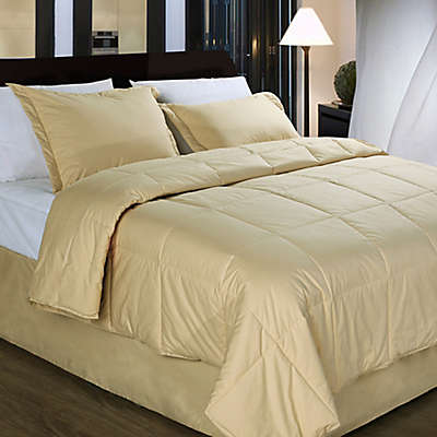 Cotton Dream Colors All Natural Cotton Filled Comforter