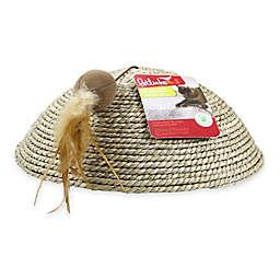 Scratch Dome™ Cat Scratcher in Brown