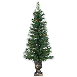 4-Foot Pre-Lit Potted Idaho Pine Christmas Tree with Clear Lights