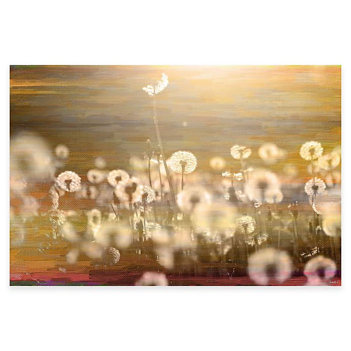 Alternate image 1 for Parvez Taj Field 24-Inch x 16-Inch Canvas Wall Art