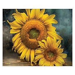 Courtside Market Sunflowers Canvas Wall Art