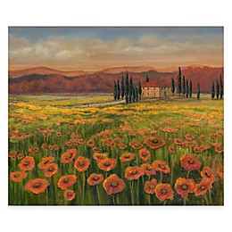 Courtside Market Tuscan Meadow I Canvas Wall Art