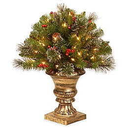 National Tree Company 24-Inch Crestwood Spruce Porch Bush with Clear Lights