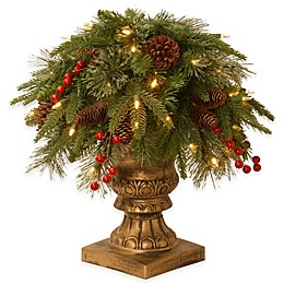 National Tree Company Colonial Pre-Lit Porch Bush with Clear Lights