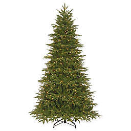 National Tree Company 7.5-Foot Northern Frasier Fir Pre-Lit Christmas Tree with Clear Lights