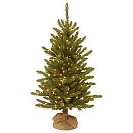National Tree Company 4-Foot Kensington Pine Pre-Lit Christmas Tree with Clear Lights