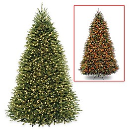 National Tree Dunhill Fir Christmas Tree with PowerConnect™ Dual Color® Lights