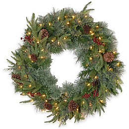 National Tree 24-Inch Colonial Pre-Lit Wreath with Color Changing LED Lights