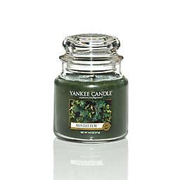 Yankee Candle® Housewarmer® Mistletoe Gui Medium Classic Candle Jar