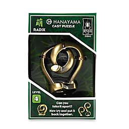 Hanayama Level 4 Radix Cast Puzzle
