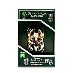 Hanayama Level 5 H and H Cast Puzzle