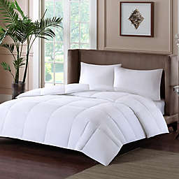 Sleep Philosophy Level 1 Warm Down Alternative Comforter with 3M Thinsulate