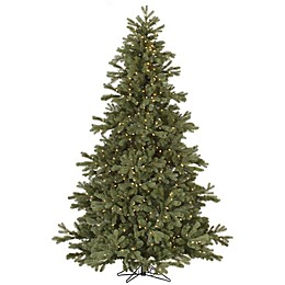 Vickerman Frasier Fir Tree with Clear Dura-Lit Lights