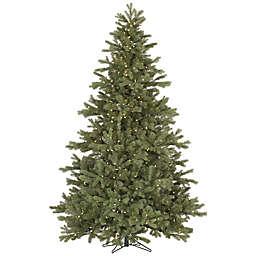 Vickerman 7.5-Foot Frasier Fir Pre-Lit Christmas Tree with Warm White LED Lights