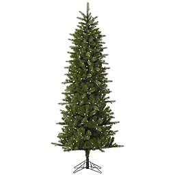 Vickerman Carolina Pencil Spruce Pre-Lit Christmas Tree with Warm White LED Lights