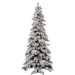 Vickerman 5-Foot Flocked Kodiak Spruce Pre-Lit Christmas Tree with Multicolor LED Lights