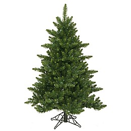 Vickerman Camdon Fir Christmas Tree