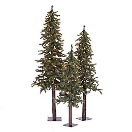 Vickerman 3-Piece 2, 3 & 4-Foot Natural Alpine Pre-Lit Christmas Tree Set with Multi Lights