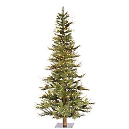 Vickerman Ashland Fir Christmas Tree with Clear Lights