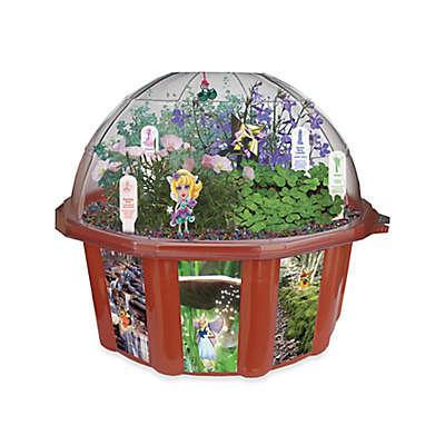 Dome Terrarium Fairy Triad
