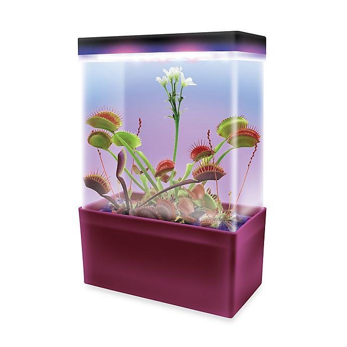 Carnivorous Creatures Led Light Cube Terrarium Bed Bath