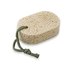 Natural Cellulose Sponge
