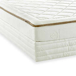 Enso by Klaussner® Dream Weaver Memory Foam Mattress