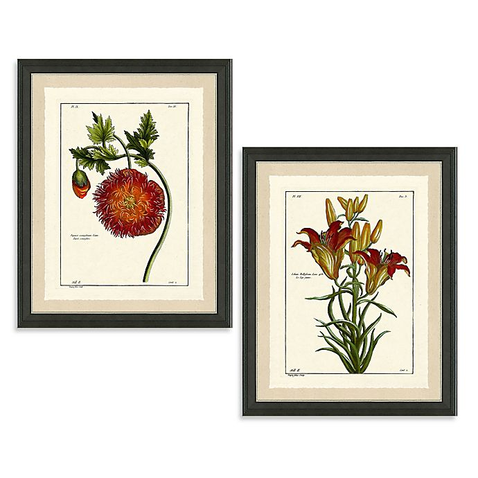 Rustic Red Botanical Framed Wall Art | Bed Bath & Beyond