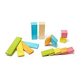 Tegu 14-Piece Tints Magnetic Wooden Set