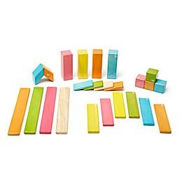 Tegu 24-Piece Tints Magnetic Wooden Set