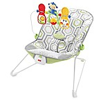 Fisher-Price® Baby's Bouncer in Geo Meadow™