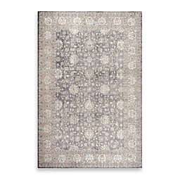Safavieh Sofia Collection Traditional Rug in Grey