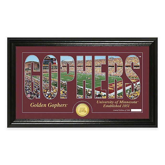 Alternate image 1 for University of Minnesota Stadium Minted Coin Panoramic Photo Mint