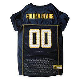 University of California, Berkeley Pet Jersey