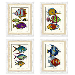 School of Fish Framed Wall Art Collection
