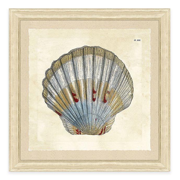 Alternate image 1 for Sea Shell Print IV Giclée Framed Wall Art