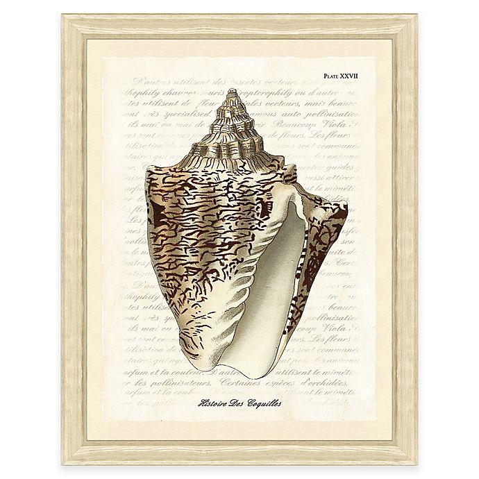 Alternate image 1 for Sepia Shell Print I Giclée Framed Wall Art