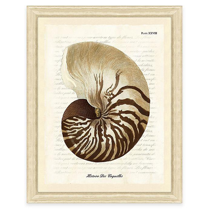 Alternate image 1 for Sepia Shell Print II Giclée Framed Wall Art