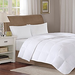 Sleep Philosophy True North 3M Light Warmth Down Comforter in White