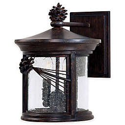 The Great Outdoors® Abbey Lane™ 2-Light Wall-Mount Outdoor Lantern in Iron Oxide