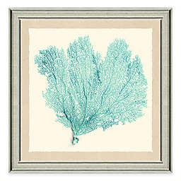 Framed Giclée Teal Sea Fan Print I Wall Art