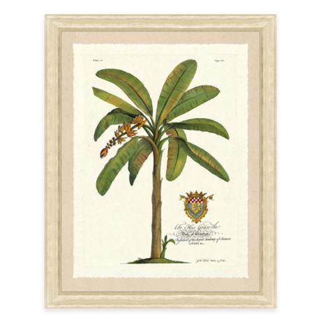 Palm Tree Iii Framed Art Print Bed Bath Amp Beyond