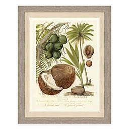 Palm and Fruit Tree II Framed Art Print