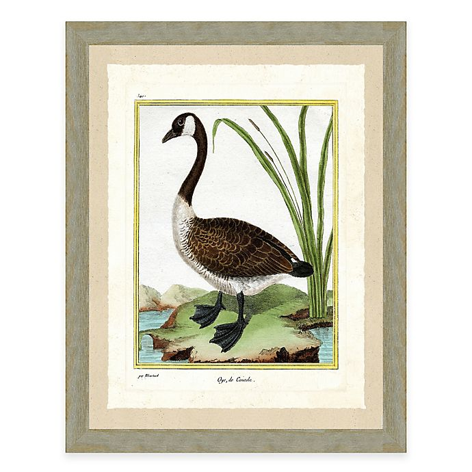 Goose I Framed Art Print Bed Bath Beyond